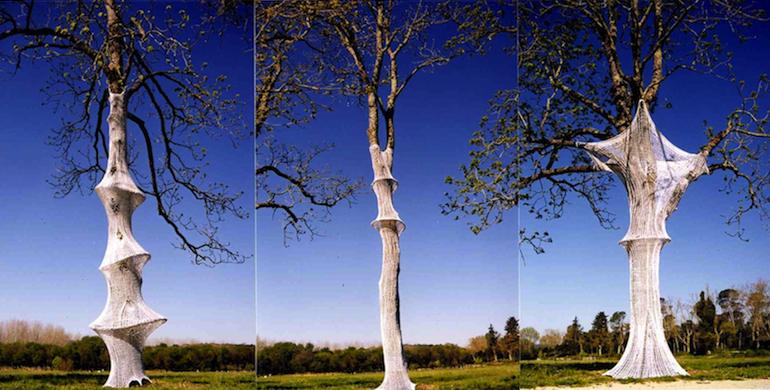 Christine xtine Boileau arbres et mailles tricotin
